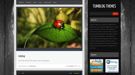 Quantez Tumblog WordPress theme