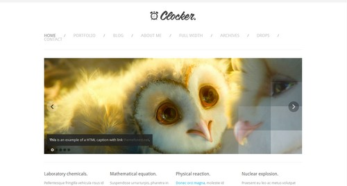 CSS Templates Free